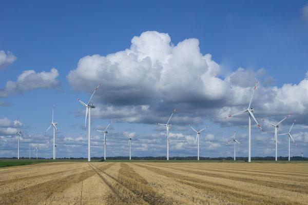 Riesige Windkraftanlagen säumen unseren Weg zurück zum Hotel Wikinger Hof in Kropp