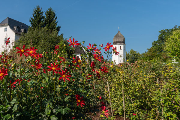 Klostergarten, im Hintergrund der Glockenturm