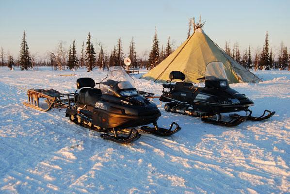 reindeer herders russia