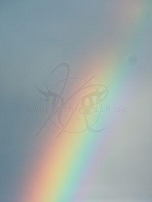 Regenbogen gen Himmel