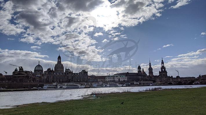 Dresdener Elbe - Altstadt