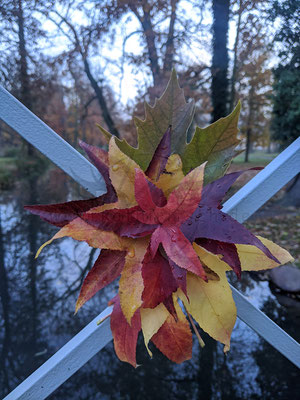 Herbstblatt-Blume