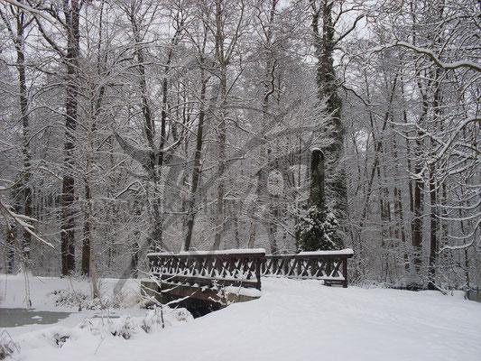 Brücke im Weißen