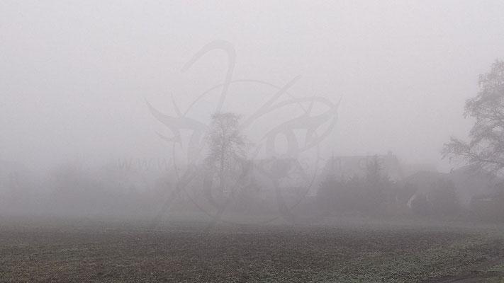 Weißer Nebel