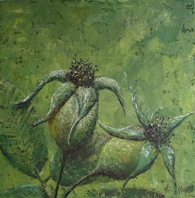 Rosenfrüchte grün - 2005 -  Acryl auf Leinwand - 60x60
