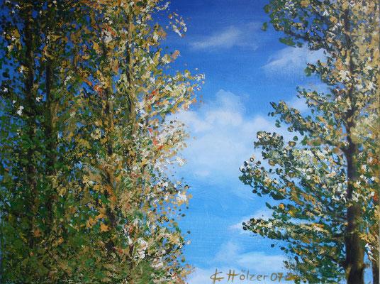 Pappel - 2007 - Acryl auf Leinwand - 60x80