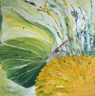 Zitronenfalter Löwenzahn - 2011 - Acryl auf Leinwand - 60x60