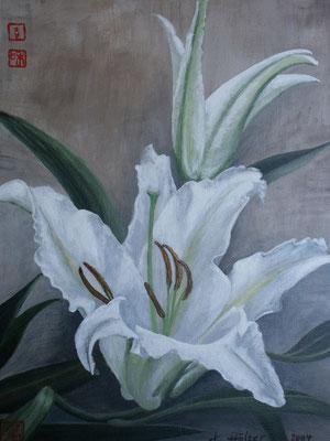 Weiße Lilie - 2004 - Acryl auf Leinwand - 40x50