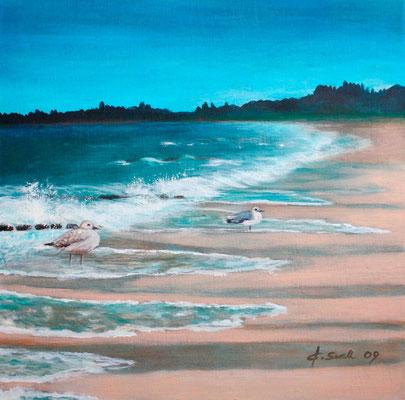 2 Möwen am Strand - 2009 - Acryl auf Leinwand - 60x60
