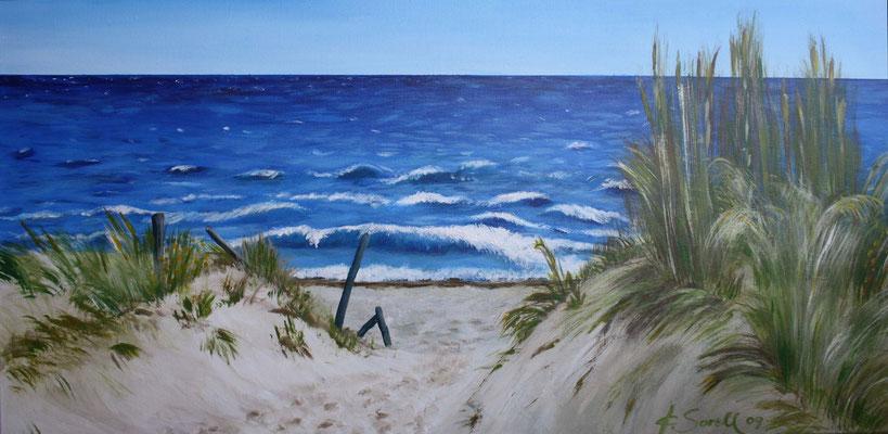 Düne zum Strand - 2009 - Acryl auf Leinwand - 50x100
