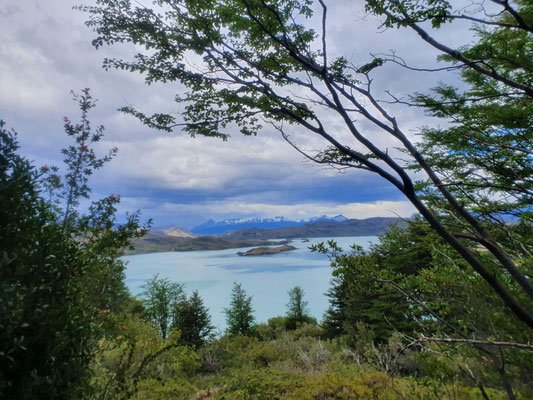 Blick zurück zum See Pehue