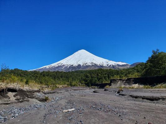 Osorno, der Fuji von Chile
