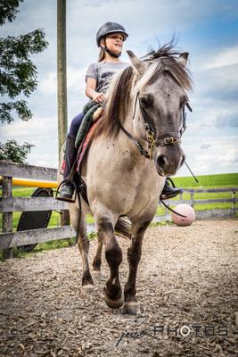 Mädchen reitet auf Pferd (Norweger)