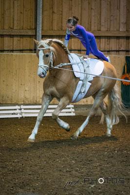 Voltigieren [ Turnier ] - Kind macht Liegestütz auf galoppierendem Pferd (Haflinger)