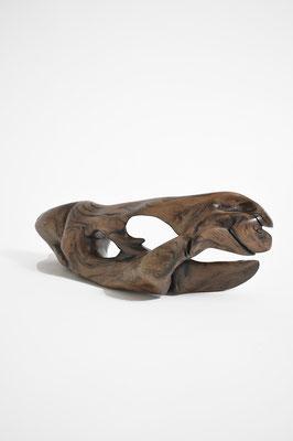 S1389 · Trop.Driftwood
