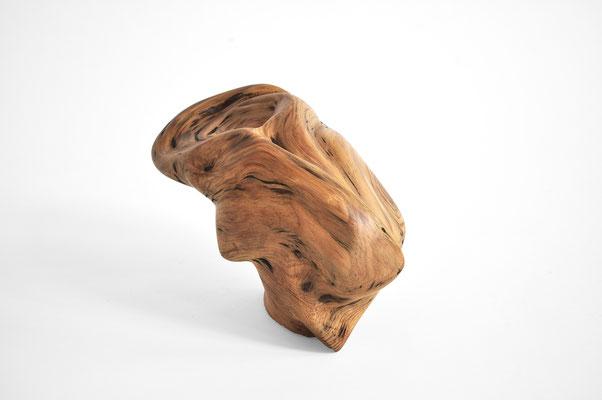 S1369 · Aleppo Pine