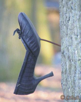 Ausgedient?! - linker Schuh