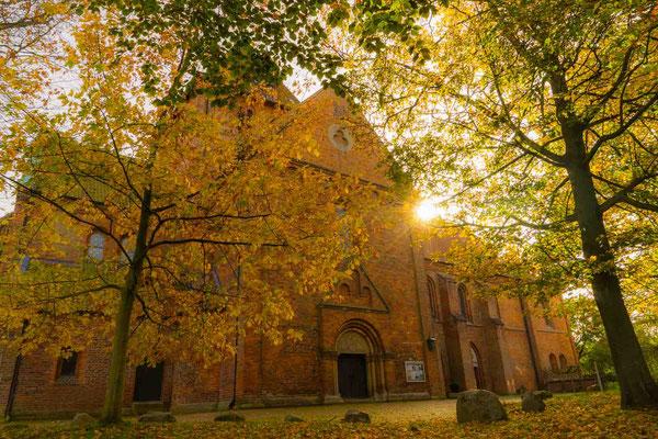 Stiftskirche im Herbst