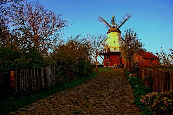 Wedehorner Windmühle