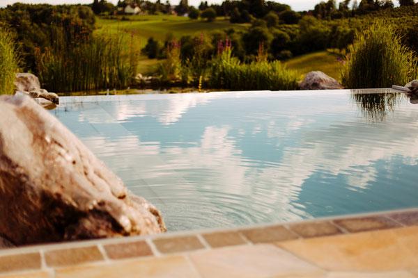 Schwimmteich Naturpool Garten Hodl Individuelle Traumgarten