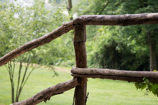 Percosi zig zag nel parco