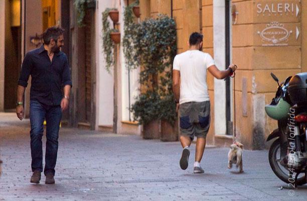 Dai Toby, corri più veloce!
