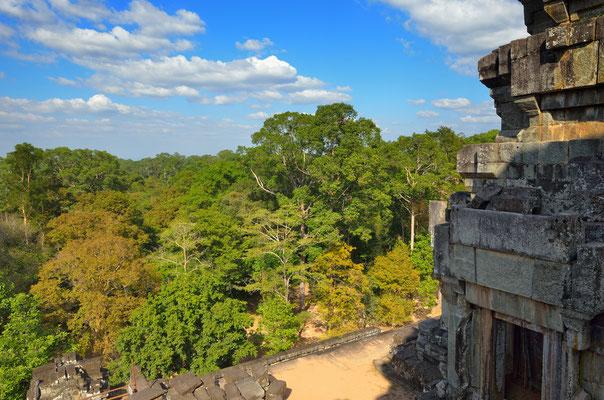 Der Dschungel Tempel Phnom Da