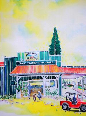 Lanai city:原画サイズ36x49cm SOLD