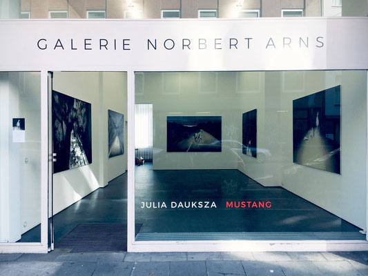 GALERIE NORBERT ARNS 2019 COLOGNE, GERMANY