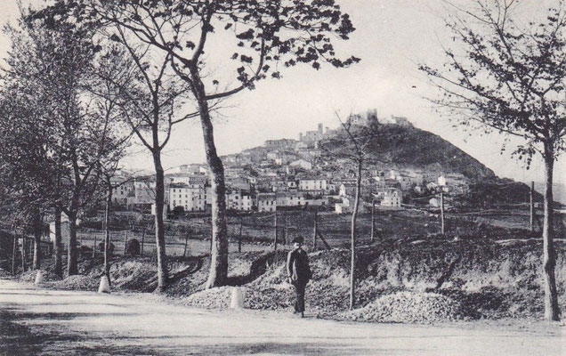 Veduta da nord-est. Sul Monte dominato dal Castello Monforte era presente un insediamento dei Sanniti, posto a controllo del tratturo. Il percorso gradinato, attraverso il borgo medievale, consente di toccare anche le chiese di S. Bartolomeo e S. Giorgio