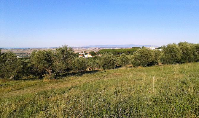 Il Convento e, oltre le basse colline, il Promontorio del Gargano