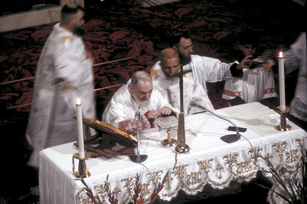 In quel 1966 si ricordavano i cinquant'anni di sua permanenza a S. Giovanni Rotondo. L'amminsitrazione cittadina, presieduta dal dr. Giuseppe Sala, decise di festeggiare questa ricorrenza con particolare solennità...