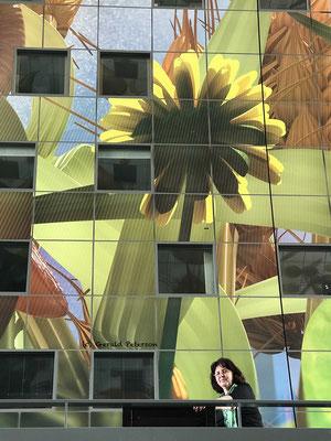 Markthallen Rotterdam