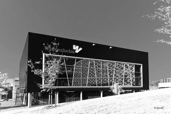 Windesheim University, gym building