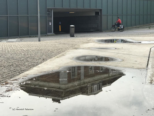 Reflections in puddle