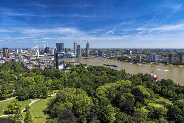 Rotterdam from Euromast