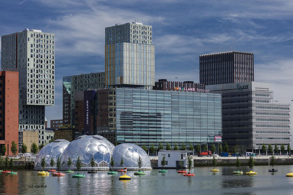Inholland University, Rotterdam