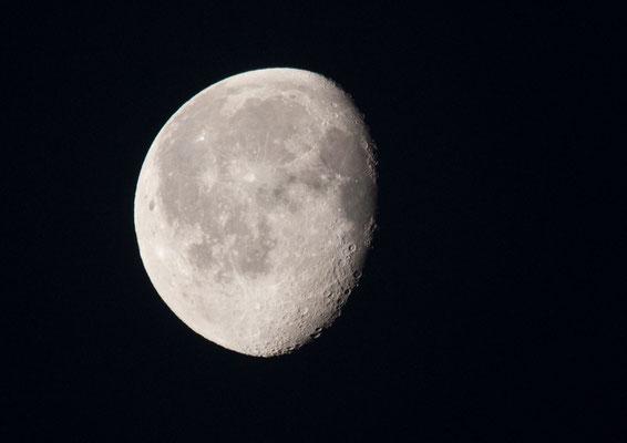 Der Mond vor Sonnenaufgang