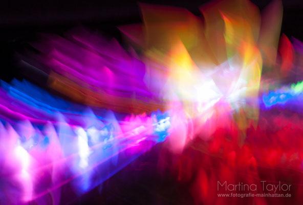 Licht- und Farbenspiel im Palmengarten