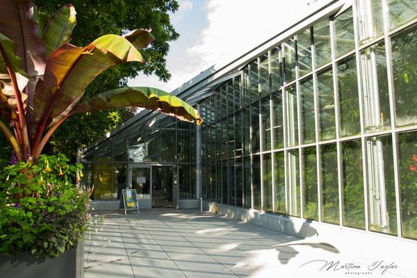 Maria-Sibylla-Merian Haus im Palmengarten