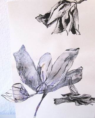 Verblühte, Tusche und Buntstift auf Papier, Collage, 42 x 29,5 cm, 2017