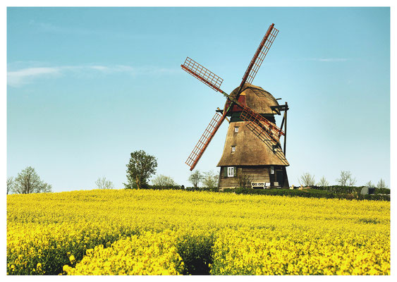 Erdholländermühle in Farve