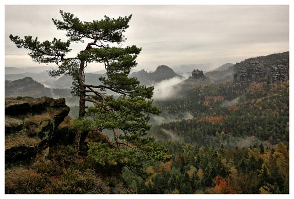 Aussicht am Kleinen Winterberg