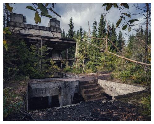 Stahlbeton im Wald...