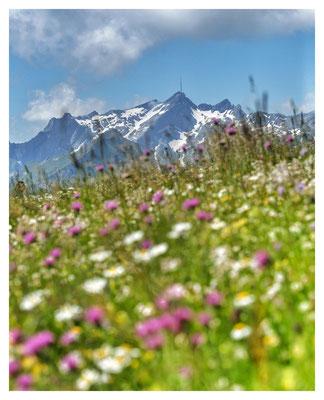 ...mit dem Säntis, dem höchsten Berg der Gegend