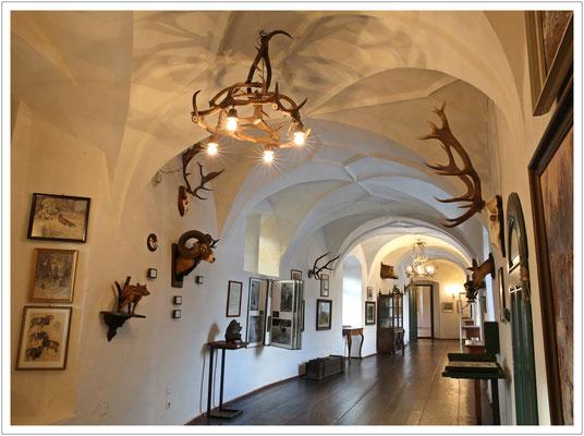 Ausstellung zur Jagdgeschichte