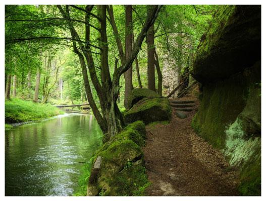 Wanderweg im Kamnitztal