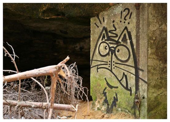 Die Miez vom Zschand - Graffiti an einer ehemaligen Pulverkammer der Waldarbeiter (früher wurden Baumwurzeln noch gesprengt)