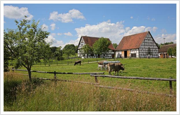 oberschwäbische Bauernhofidylle