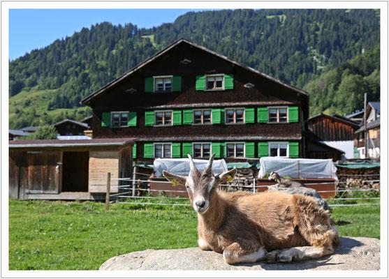 Begegnung in Vorarlberg